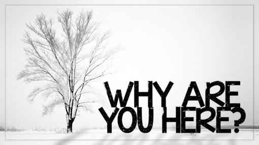 whyhere